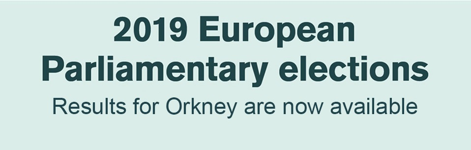 European Elections 2019 banner.